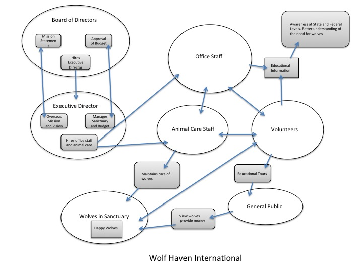 Mexican Gray Wolf Food Web