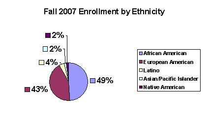 Enrollment by Ethnicity.jpg